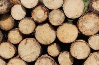 chopped-wood-1846182_1920